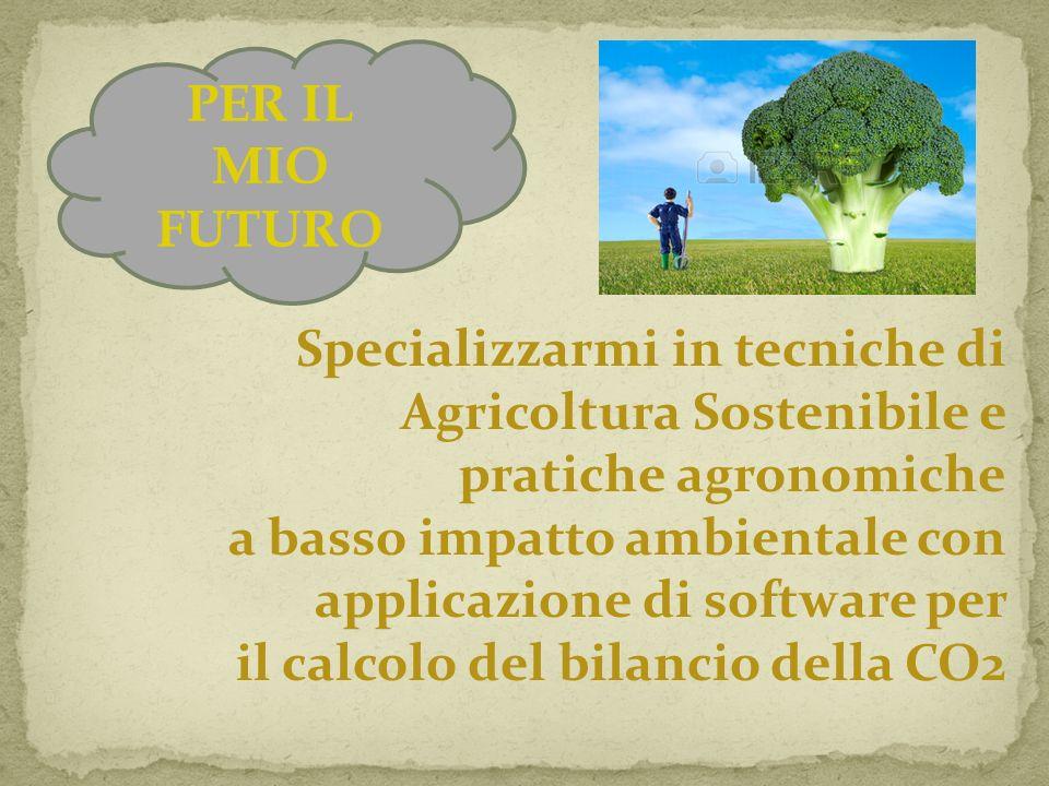 PER IL MIO FUTURO Specializzarmi in tecniche di Agricoltura Sostenibile e pratiche agronomiche a basso impatto ambientale con applicazione di software