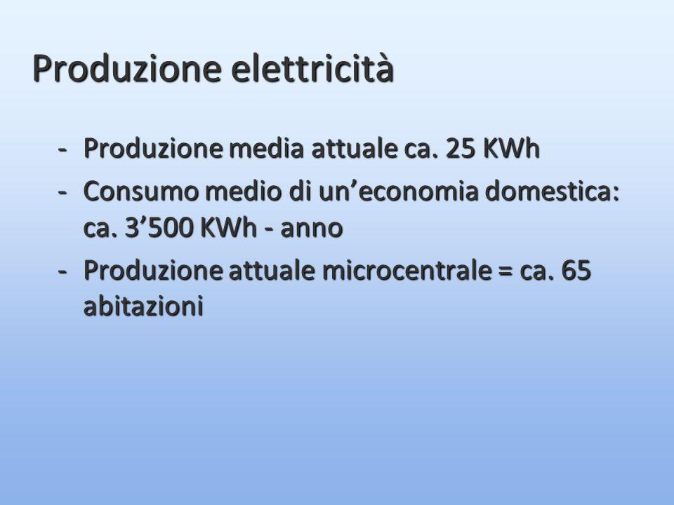 -Produzione media attuale ca. 25 KWh -Consumo medio di un'economia domestica: ca.
