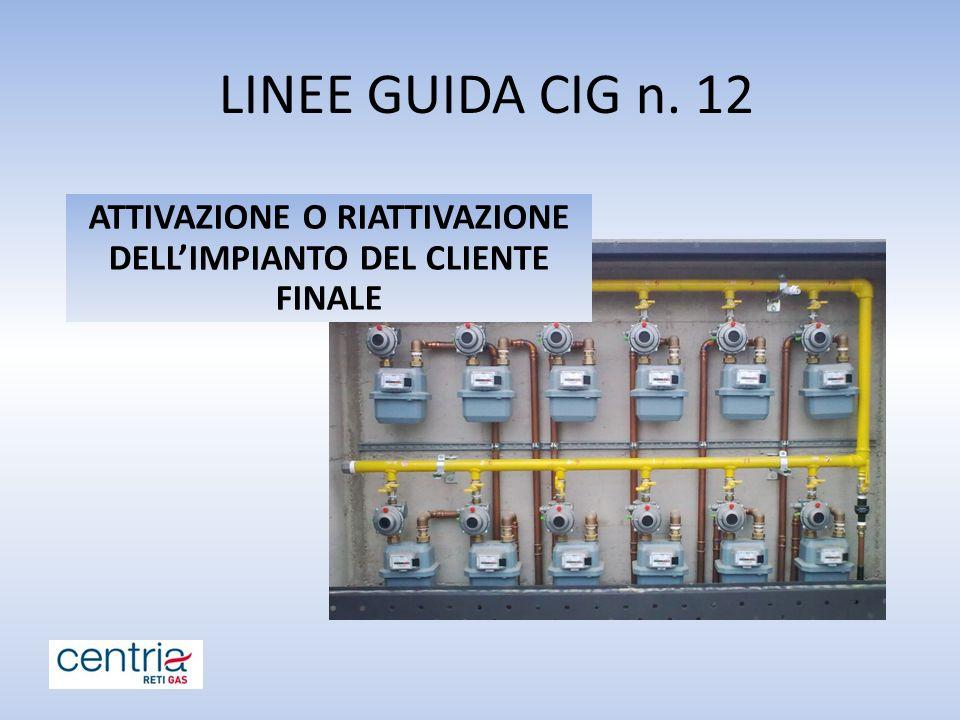 LINEE GUIDA CIG n. 12 ATTIVAZIONE O RIATTIVAZIONE DELL'IMPIANTO DEL CLIENTE FINALE