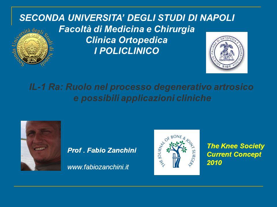 SECONDA UNIVERSITA' DEGLI STUDI DI NAPOLI Facoltà di Medicina e Chirurgia Clinica Ortopedica I POLICLINICO Prof. Fabio Zanchini www.fabiozanchini.it I
