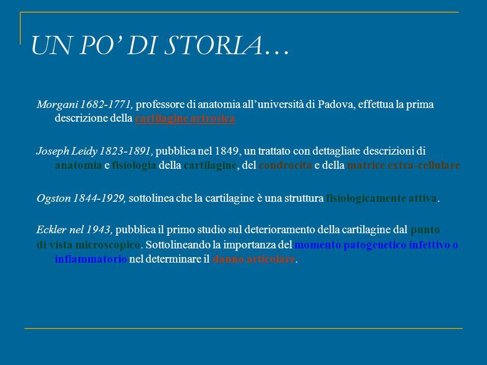 Morgani 1682-1771, professore di anatomia all'università di Padova, effettua la prima descrizione della cartilagine artrosica Joseph Leidy 1823-1891,