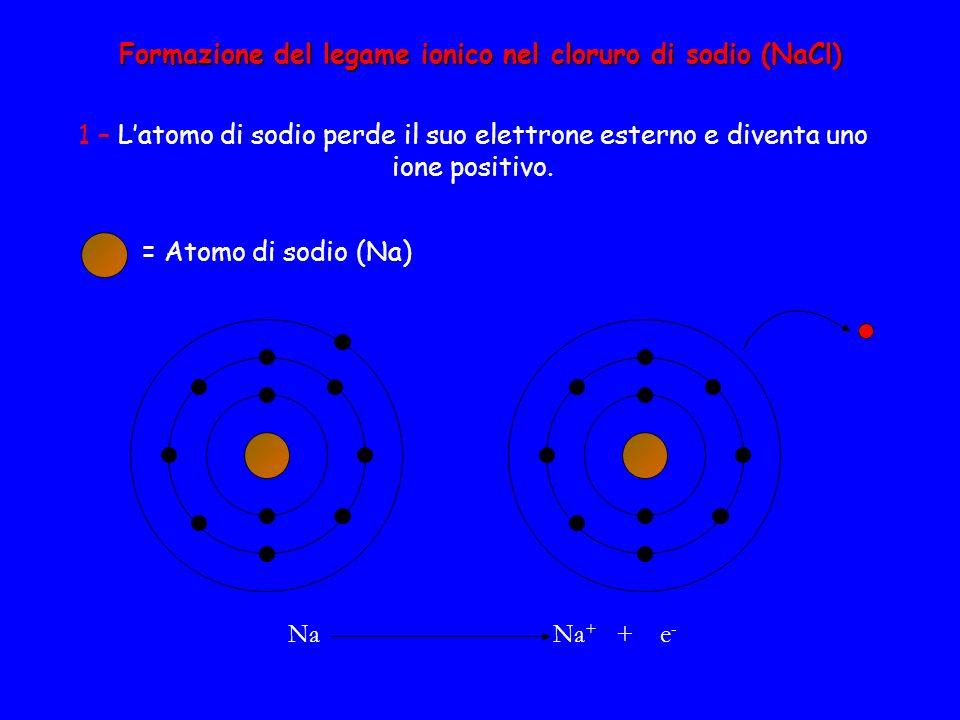Formazione del legame ionico nel cloruro di sodio (NaCl) 1 – L'atomo di sodio perde il suo elettrone esterno e diventa uno ione positivo. Na Na + + e
