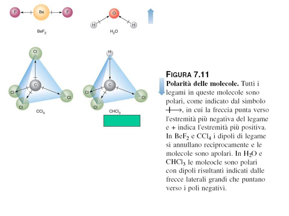 Polarità delle molecole