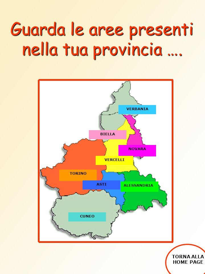 Guarda le aree presenti nella tua provincia …. TORINO ALESSANDRIA ASTI NOVARA VERCELLI CUNEO BIELLA VERBANIA TORNA ALLA HOME PAGE