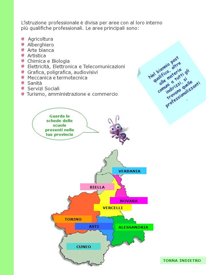 L'istruzione professionale è divisa per aree con al loro interno più qualifiche professionali. Le aree principali sono: Agricoltura Alberghiero Arte b