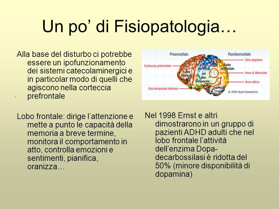. Un po' di Fisiopatologia… Alla base del disturbo ci potrebbe essere un ipofunzionamento dei sistemi catecolaminergici e in particolar modo di quelli che agiscono nella corteccia prefrontale Lobo frontale: dirige l'attenzione e mette a punto le capacità della memoria a breve termine, monitora il comportamento in atto, controlla emozioni e sentimenti, pianifica, oranizza… Nel 1998 Ernst e altri dimostrarono in un gruppo di pazienti ADHD adulti che nel lobo frontale l'attività dell'enzima Dopa- decarbossilasi è ridotta del 50% (minore disponibilità di dopamina)