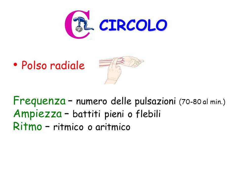 CIRCOLO Polso radiale Frequenza – numero delle pulsazioni (70-80 al min.) Ampiezza – battiti pieni o flebili Ritmo – ritmico o aritmico
