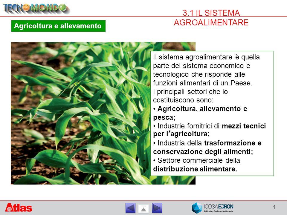 1 3.1 IL SISTEMA AGROALIMENTARE Agricoltura e allevamento Il sistema agroalimentare è quella parte del sistema economico e tecnologico che risponde alle funzioni alimentari di un Paese.