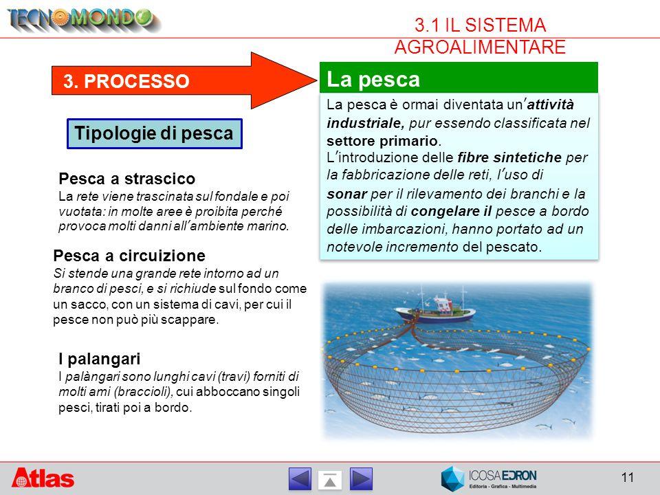 11 3.1 IL SISTEMA AGROALIMENTARE 3. PROCESSO La pesca La pesca è ormai diventata un'attività industriale, pur essendo classificata nel settore primari