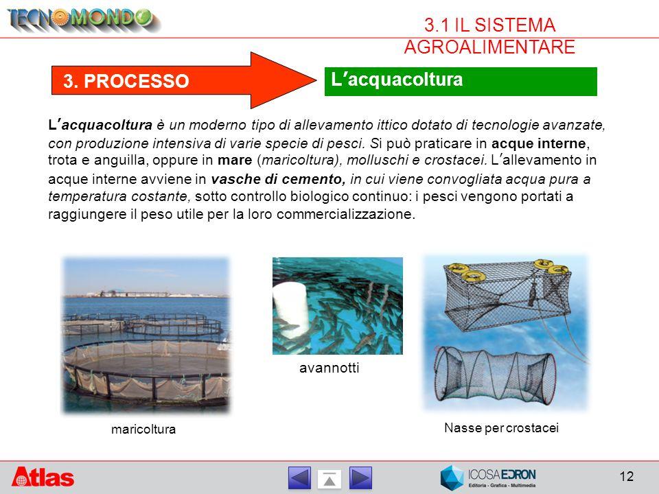 12 3.1 IL SISTEMA AGROALIMENTARE 3. PROCESSO L'acquacoltura L'acquacoltura è un moderno tipo di allevamento ittico dotato di tecnologie avanzate, con