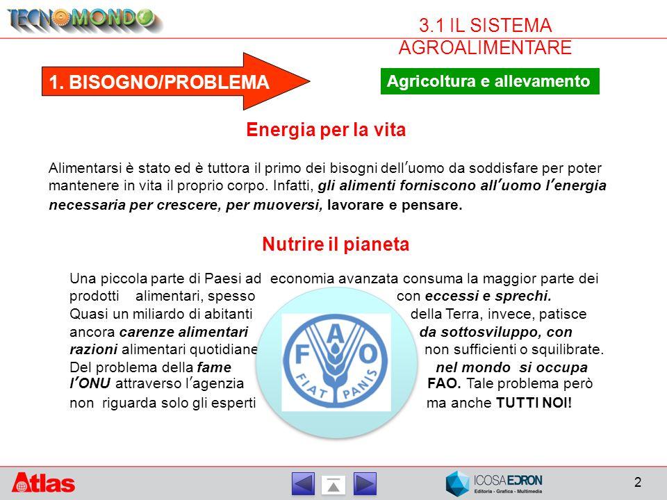 2 3.1 IL SISTEMA AGROALIMENTARE Agricoltura e allevamento 1. BISOGNO/PROBLEMA Energia per la vita Alimentarsi è stato ed è tuttora il primo dei bisogn