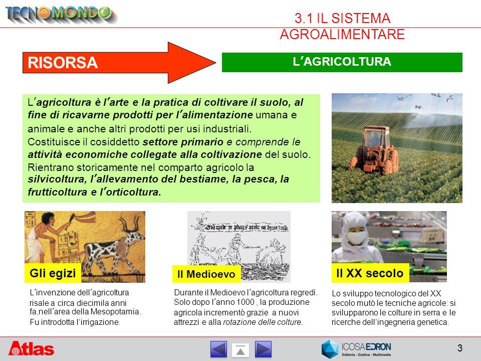 3 3.1 IL SISTEMA AGROALIMENTARE RISORSA 2. RISORSA L'AGRICOLTURA L'agricoltura è l'arte e la pratica di coltivare il suolo, al fine di ricavarne prodo
