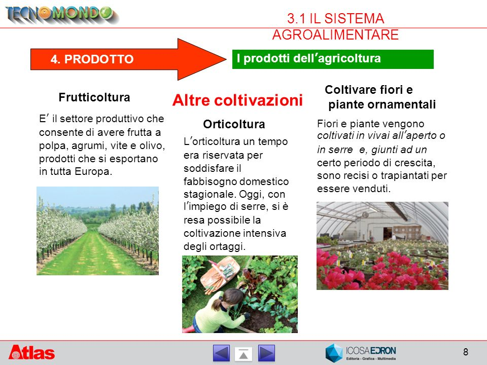 8 3.1 IL SISTEMA AGROALIMENTARE 4. PRODOTTO I prodotti dell'agricoltura Altre coltivazioni Frutticoltura E' il settore produttivo che consente di aver