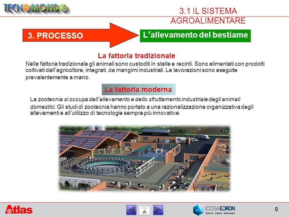 9 3.1 IL SISTEMA AGROALIMENTARE 3.