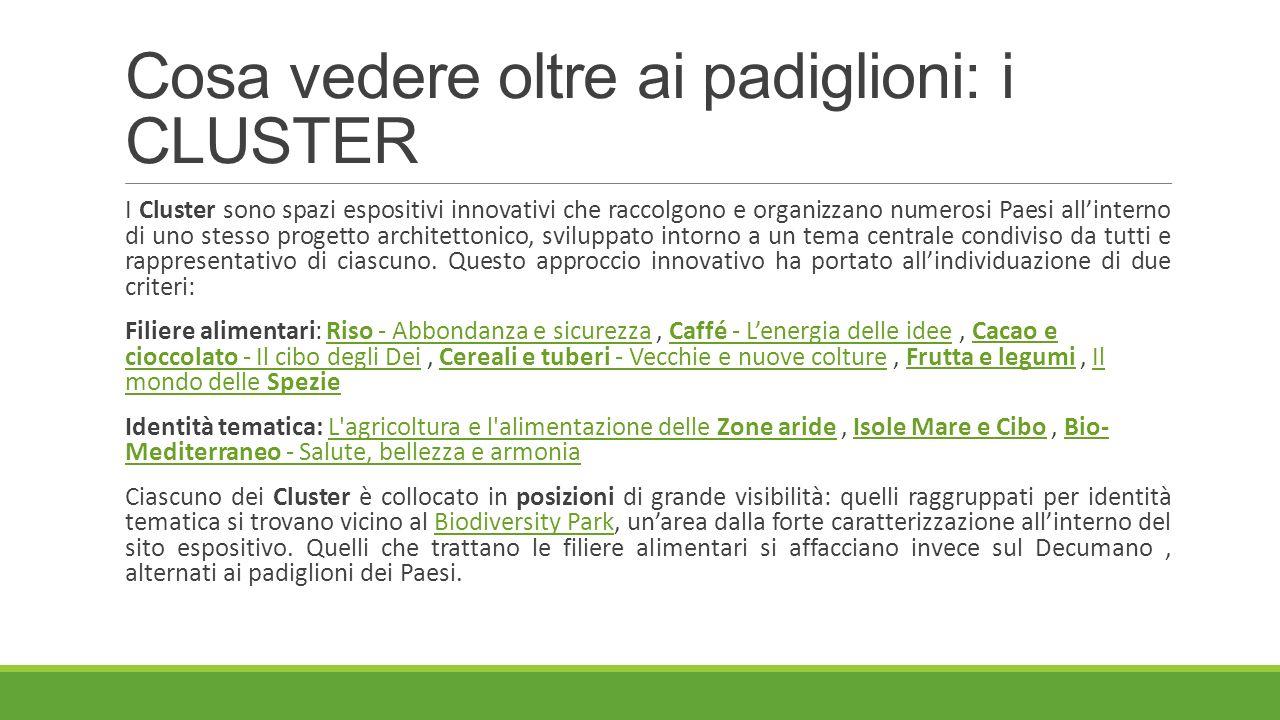 Cosa vedere oltre ai padiglioni: i CLUSTER I Cluster sono spazi espositivi innovativi che raccolgono e organizzano numerosi Paesi all'interno di uno s