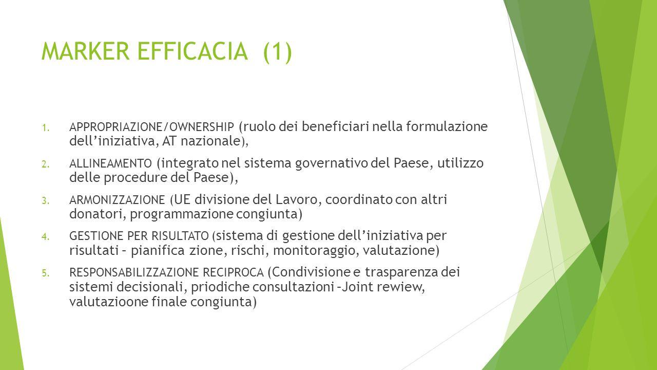 TAPPE PRINCIPALI  2002: MANUALE OPERATIVO DI MONITORAGGIO E VALUTAZIONE DELLE INIZIATIVE DI COOPERAZIONE ALLO SVILUPPO,  2003: DICHIARAZIONE DI ROMA  2005: FIRMA LA DICHIARAZIONE DI PARIGI  2007: PARTECIPA ALLA FONDAZIONE DELL'IHP  2008: FIRMA IL PRIMO COMPACT IN MOZAMBICO,  2009 : STREAM (sinteticità, trasparenza, realizzabilità, esaustività, armonizzazione, misurabilità),  2010: FIRMA IL COMPACT IN ETIOPIA,  2013: INTRODUCE MARKER EFFICACIA SU INIZIATIVE DELLA SANITA'  2014: RACCOMANDAZIONI OCSE E ADOZIONE DI UN PIANO DI VALUTAZIONE PLURIENNALE  2014: FIRMA IL COMPACT IN SUD SUDAN,  2014: LEGGE 125/20/2 AL MAECI LA VALUTAZIONE INIZIATIVE DI COOPERAZIONE