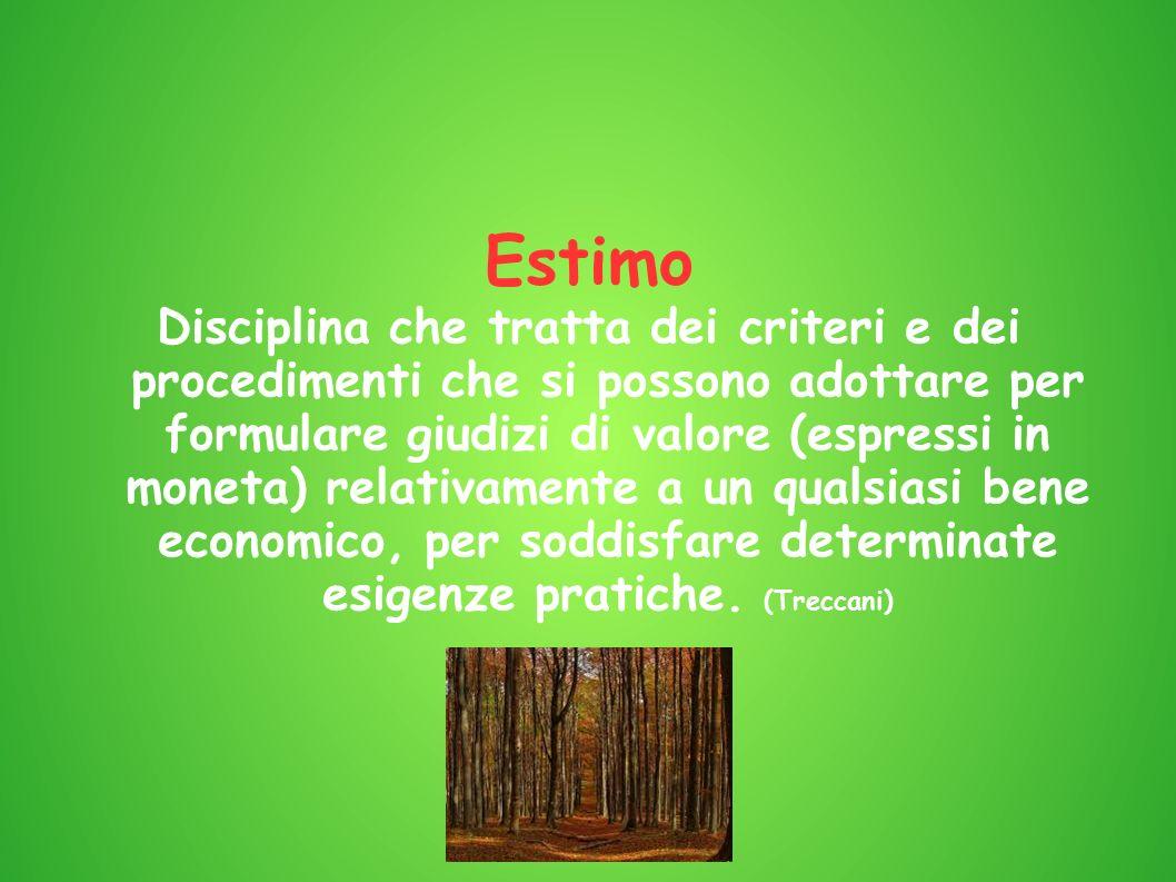 Estimo Disciplina che tratta dei criteri e dei procedimenti che si possono adottare per formulare giudizi di valore (espressi in moneta) relativamente