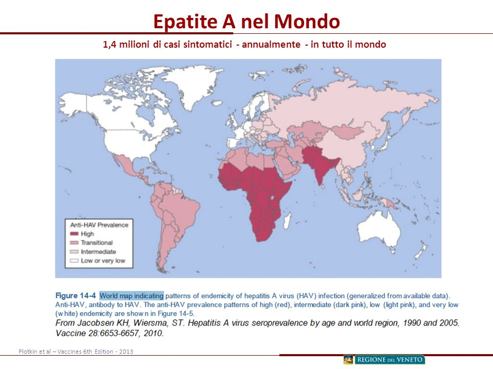 Epatite A nel Mondo 1,4 milioni di casi sintomatici - annualmente - in tutto il mondo Plotkin et al – Vaccines 6th Edition - 2013