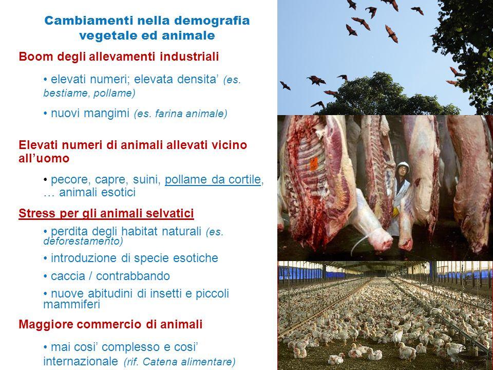 Cambiamenti nella demografia vegetale ed animale Boom degli allevamenti industriali elevati numeri; elevata densita' (es. bestiame, pollame) nuovi man