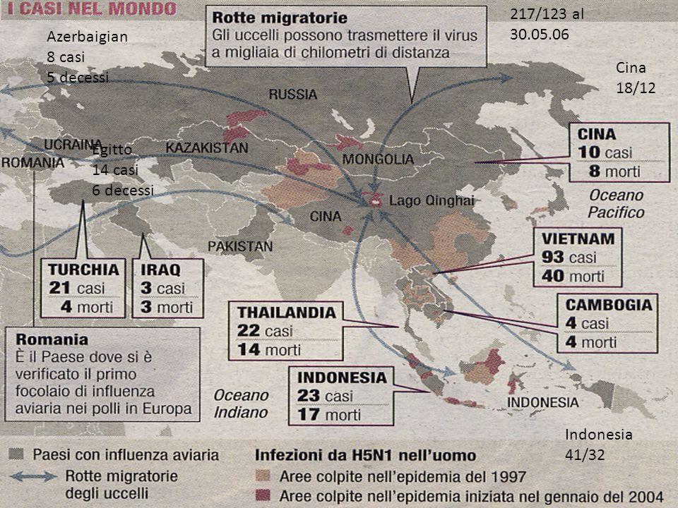 Azerbaigian 8 casi 5 decessi Egitto 14 casi 6 decessi Indonesia 41/32 Cina 18/12 217/123 al 30.05.06