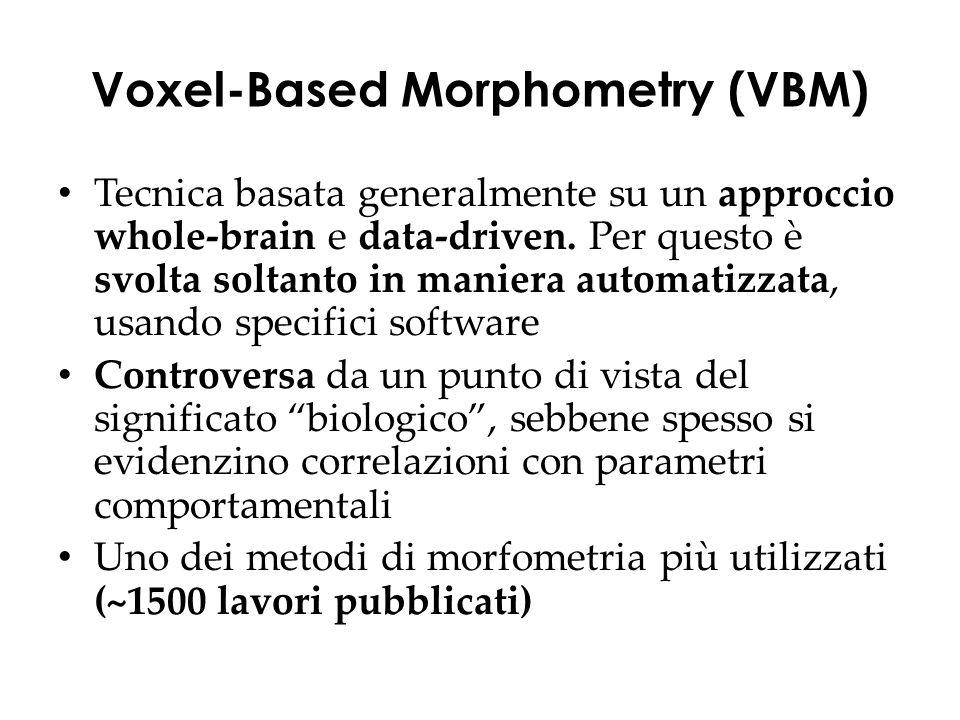Tecnica basata generalmente su un approccio whole-brain e data-driven.