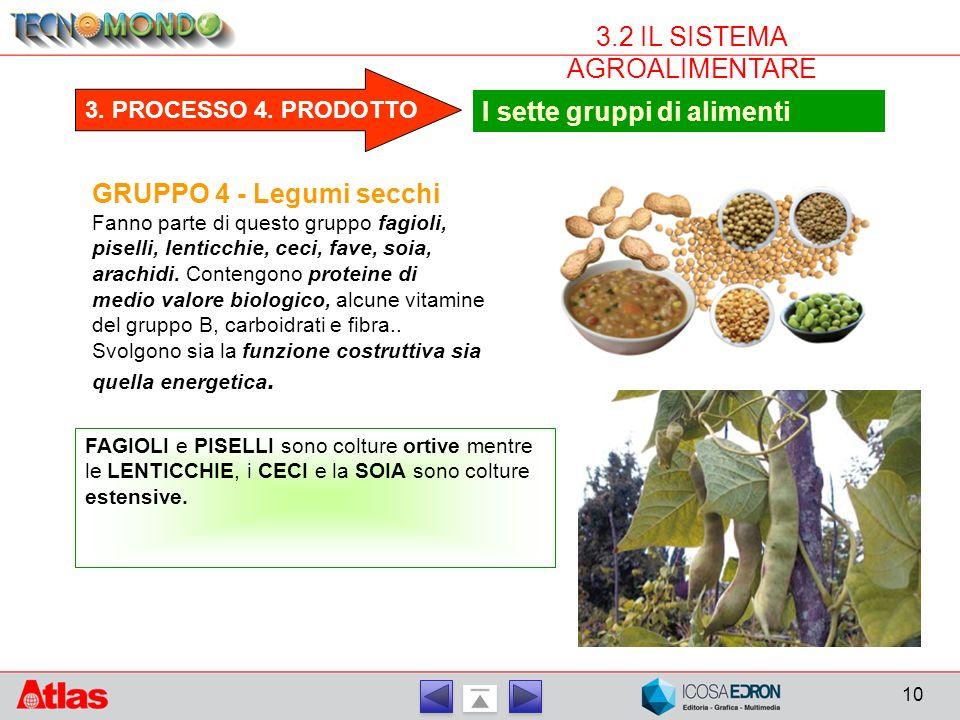 10 3.2 IL SISTEMA AGROALIMENTARE GRUPPO 4 - Legumi secchi Fanno parte di questo gruppo fagioli, piselli, lenticchie, ceci, fave, soia, arachidi.