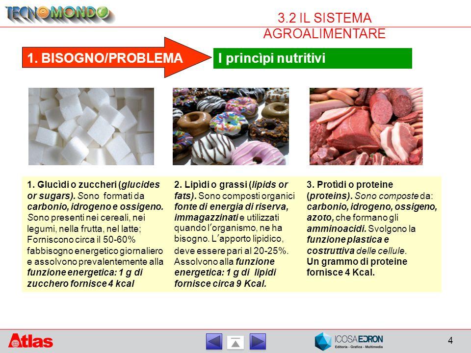 4 3.2 IL SISTEMA AGROALIMENTARE 1.BISOGNO/PROBLEMA I princìpi nutritivi 1.