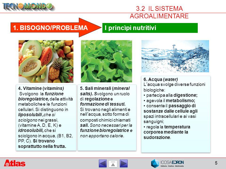 5 3.2 IL SISTEMA AGROALIMENTARE 1.BISOGNO/PROBLEMA I princìpi nutritivi 4.