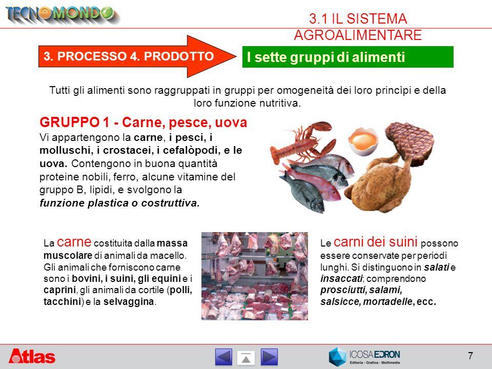 7 3.1 IL SISTEMA AGROALIMENTARE 3.PROCESSO 4.