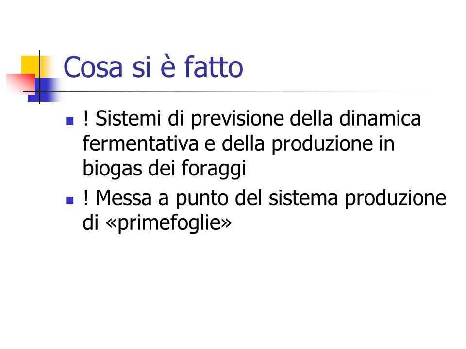 Cosa si è fatto ! Sistemi di previsione della dinamica fermentativa e della produzione in biogas dei foraggi ! Messa a punto del sistema produzione di