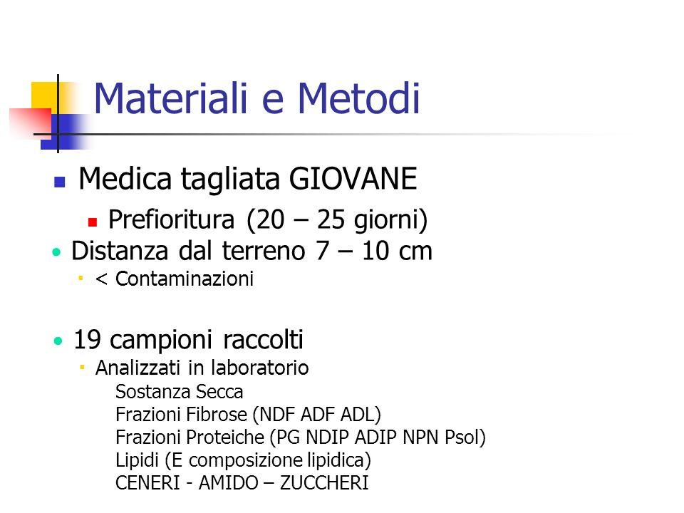 Materiali e Metodi Medica tagliata GIOVANE Prefioritura (20 – 25 giorni) Distanza dal terreno 7 – 10 cm  < Contaminazioni 19 campioni raccolti  Anal