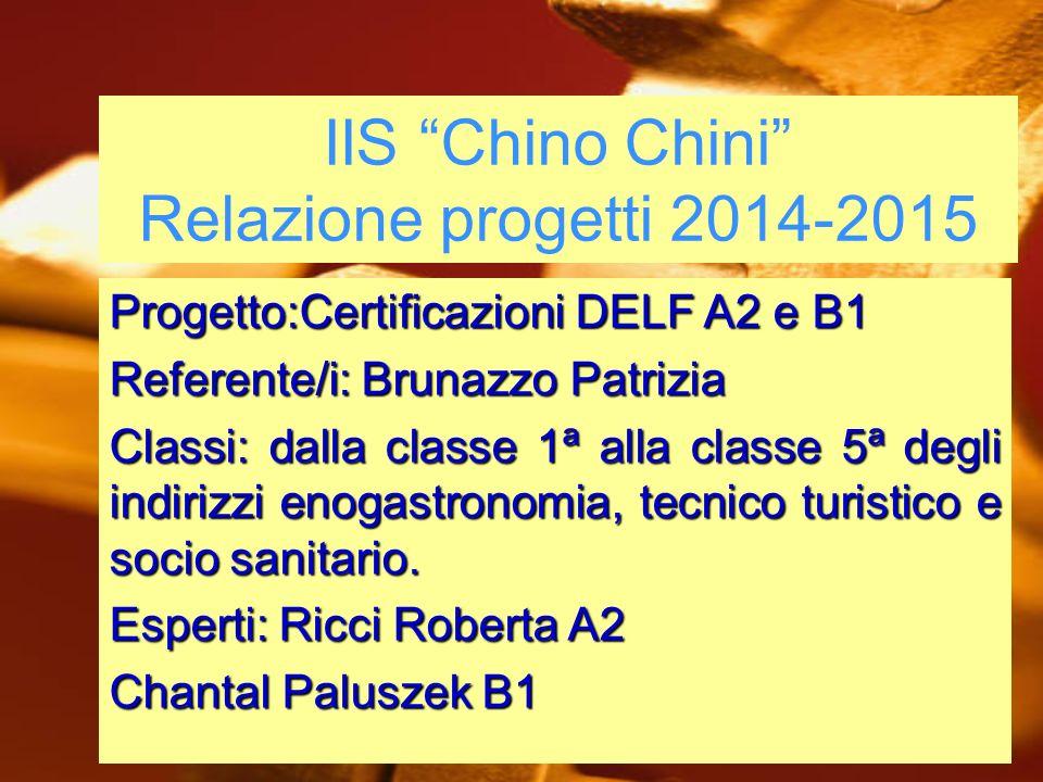 """IIS """"Chino Chini"""" Relazione progetti 2014-2015 Progetto:Certificazioni DELF A2 e B1 Referente/i: Brunazzo Patrizia Classi: dalla classe 1ª alla classe"""