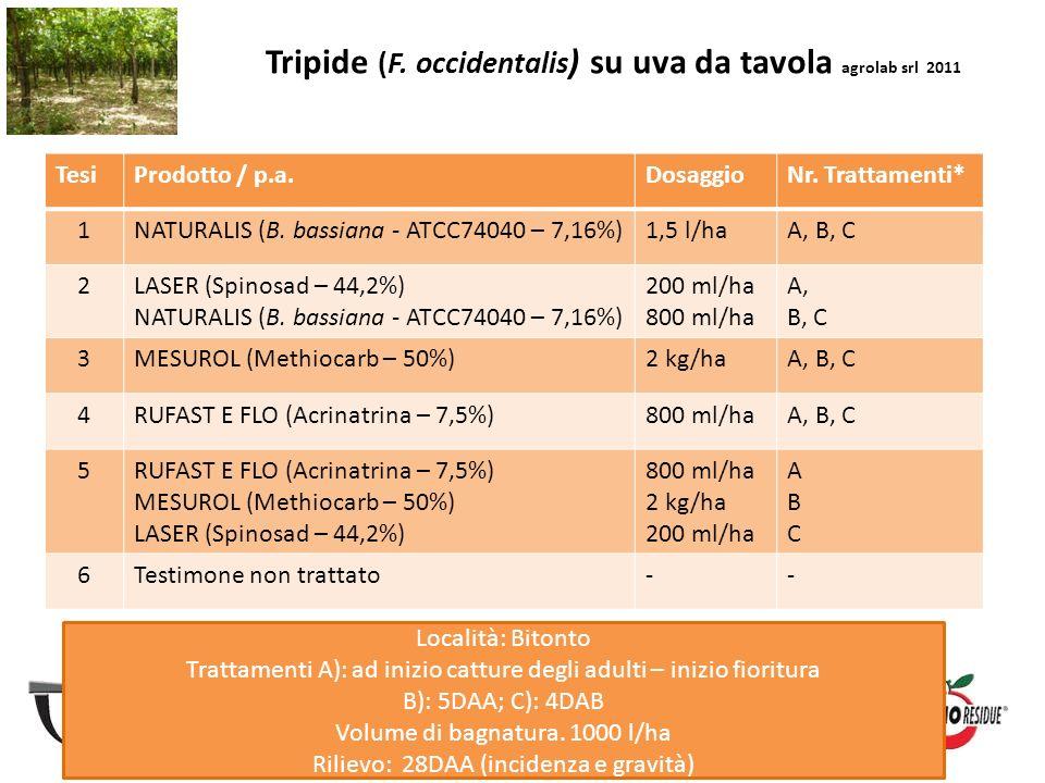 Tripide (F. occidentalis ) su uva da tavola agrolab srl 2011 TesiProdotto / p.a.DosaggioNr. Trattamenti* 1NATURALIS (B. bassiana - ATCC74040 – 7,16%)1