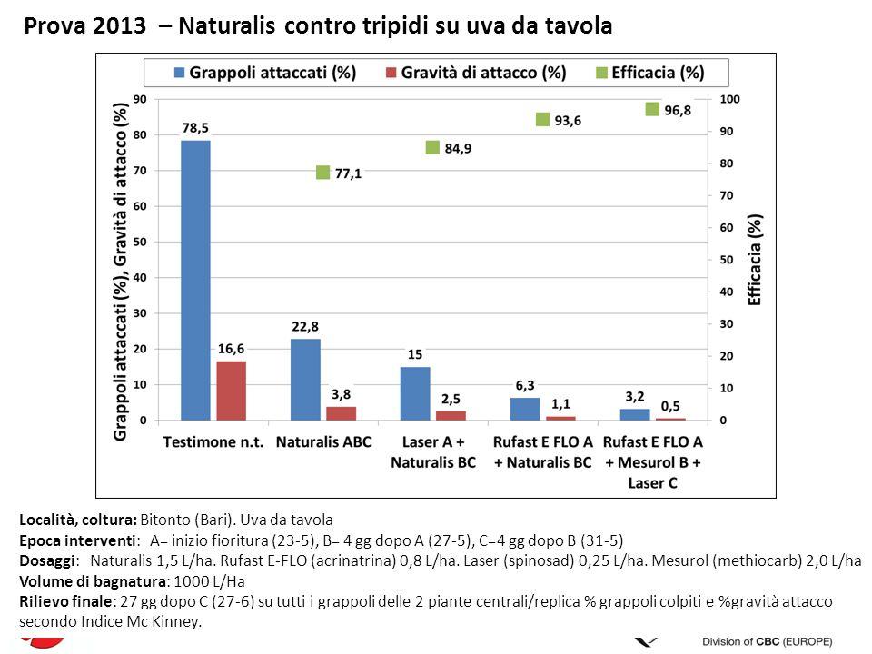 Prova 2013 – Naturalis contro tripidi su uva da tavola Località, coltura: Bitonto (Bari). Uva da tavola Epoca interventi: A= inizio fioritura (23-5),