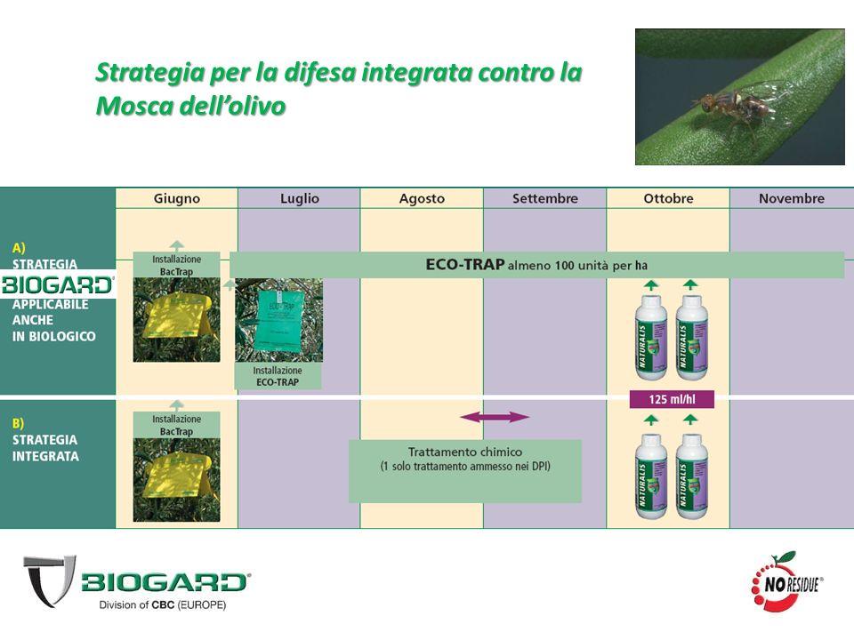 Strategia per la difesa integrata contro la Mosca dell'olivo