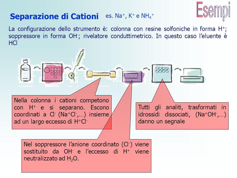 es. Na +, K + e NH 4 + Nella colonna i cationi competono con H + e si separano. Escono coordinati a Cl - (Na + Cl -,…) insieme ad un largo eccesso di