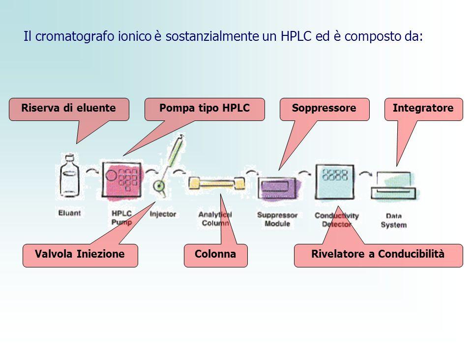 Il cromatografo ionico è sostanzialmente un HPLC ed è composto da: Riserva di eluentePompa tipo HPLC Valvola Iniezione Colonna Soppressore Rivelatore