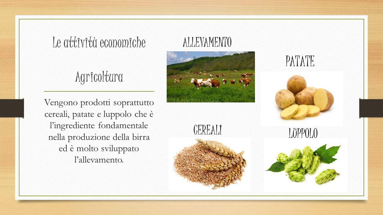 Le attività economiche Agricoltura Vengono prodotti soprattutto cereali, patate e luppolo che è l'ingrediente fondamentale nella produzione della birra ed è molto sviluppato l'allevamento.
