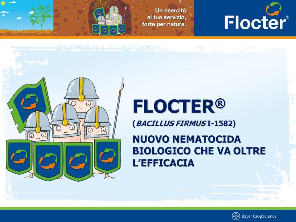 FLOCTER ® (BACILLUS FIRMUS I-1582) NUOVO NEMATOCIDA BIOLOGICO CHE VA OLTRE L'EFFICACIA