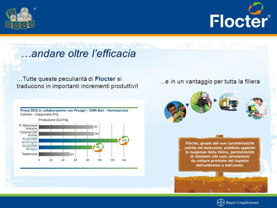 …andare oltre l'efficacia …Tutte queste peculiarità di Flocter si traducono in importanti incrementi produttivi! …e in un vantaggio per tutta la filie