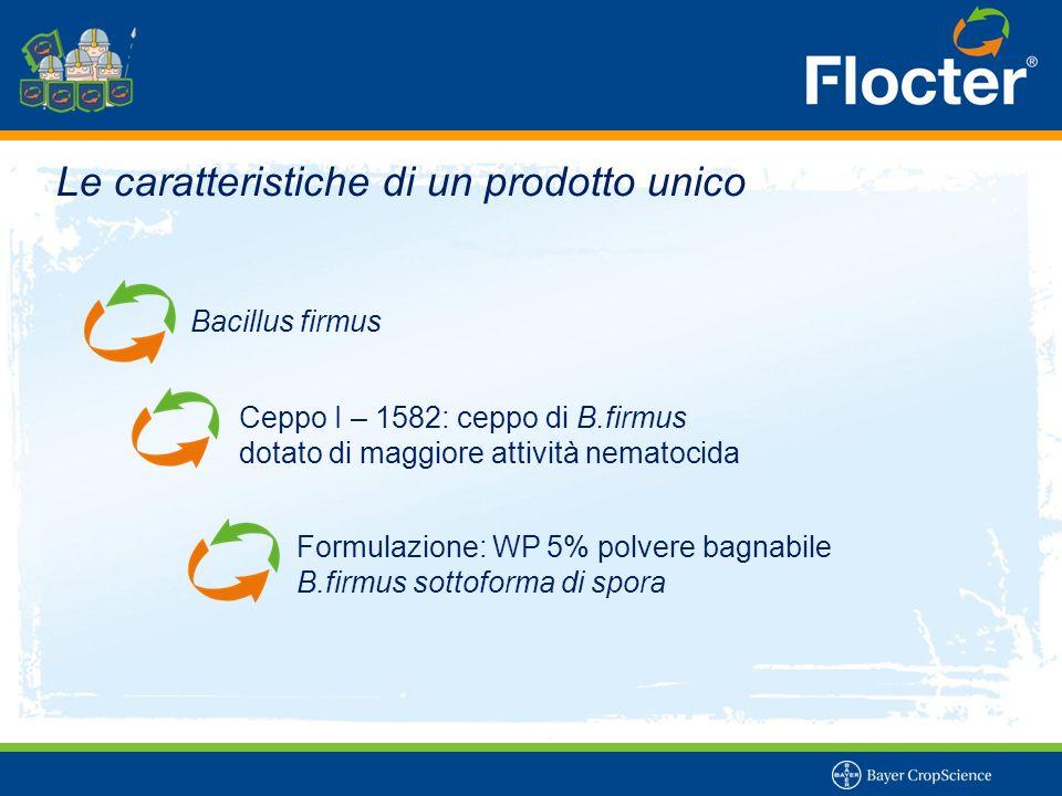 Bacillus firmus Ceppo I – 1582: ceppo di B.firmus dotato di maggiore attività nematocida Formulazione: WP 5% polvere bagnabile B.firmus sottoforma di