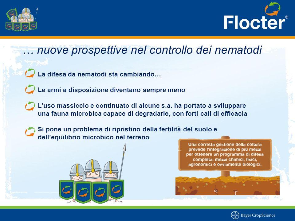 ..efficacia comprovata sulle principali colture orticole Carote attaccate da nematodi Radici di cetriolo attaccate da nematodi