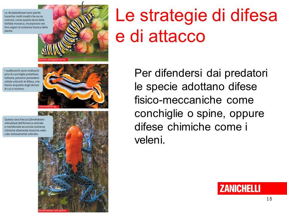 18 Le strategie di difesa e di attacco Sadava et al. La nuova biologia.blu © Zanichelli 2015 Per difendersi dai predatori le specie adottano difese fi
