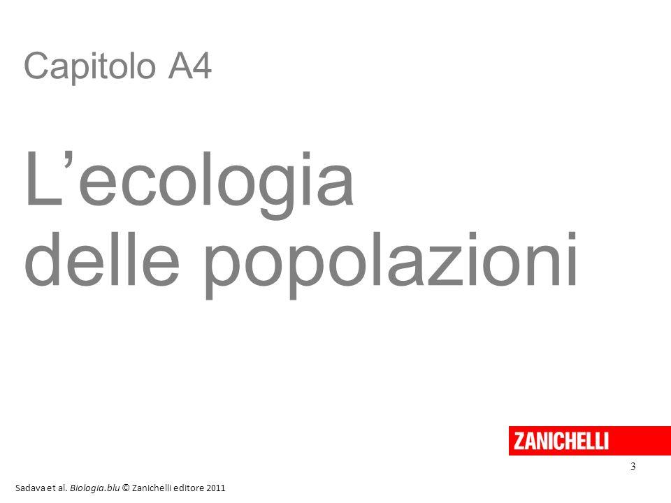Capitolo A4 L'ecologia delle popolazioni Sadava et al. Biologia.blu © Zanichelli editore 2011 3