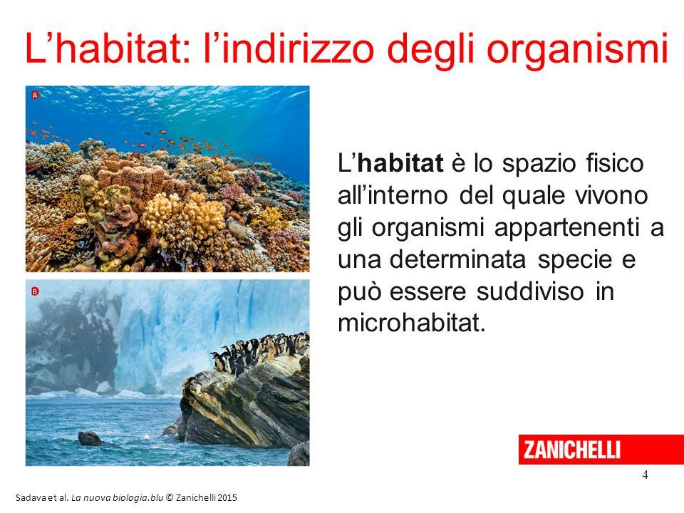 4 L'habitat: l'indirizzo degli organismi L'habitat è lo spazio fisico all'interno del quale vivono gli organismi appartenenti a una determinata specie