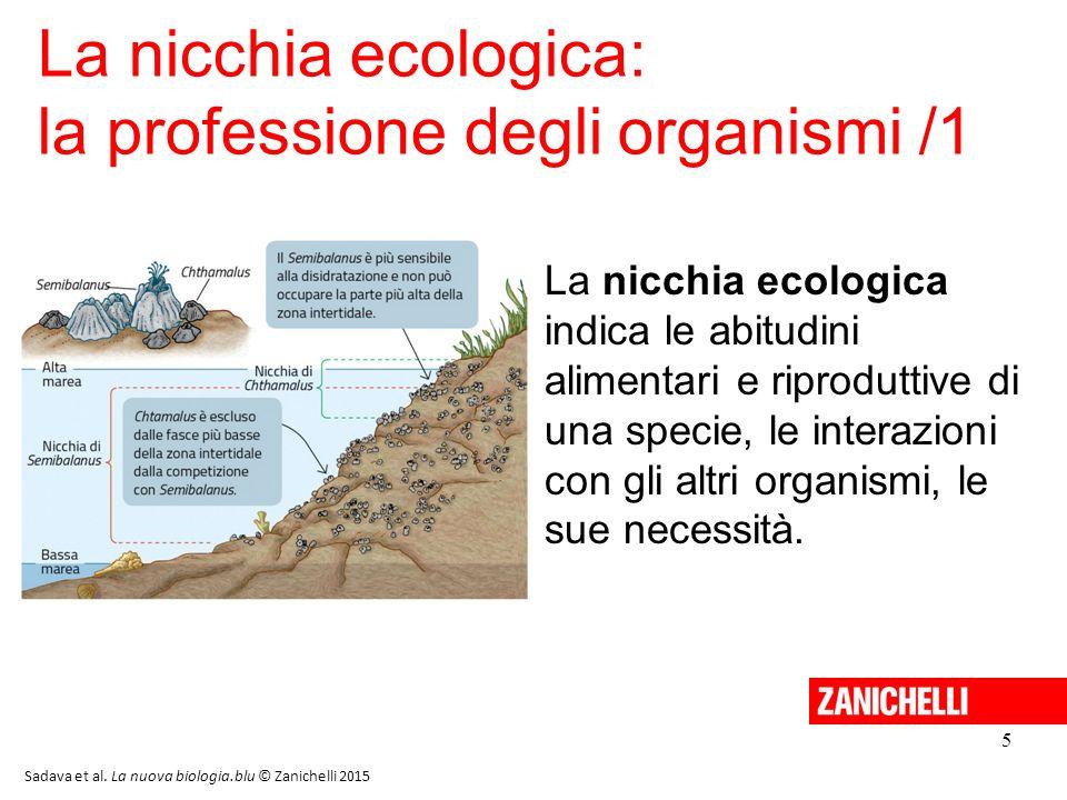 5 La nicchia ecologica: la professione degli organismi /1 Sadava et al. La nuova biologia.blu © Zanichelli 2015 La nicchia ecologica indica le abitudi