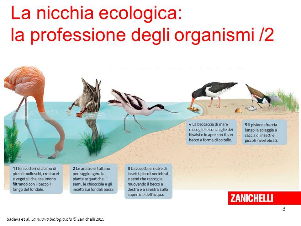6 La nicchia ecologica: la professione degli organismi /2 Sadava et al. La nuova biologia.blu © Zanichelli 2015