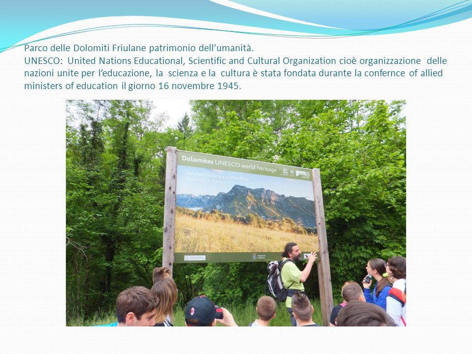 Parco delle Dolomiti Friulane patrimonio dell'umanità. UNESCO: United Nations Educational, Scientific and Cultural Organization cioè organizzazione de