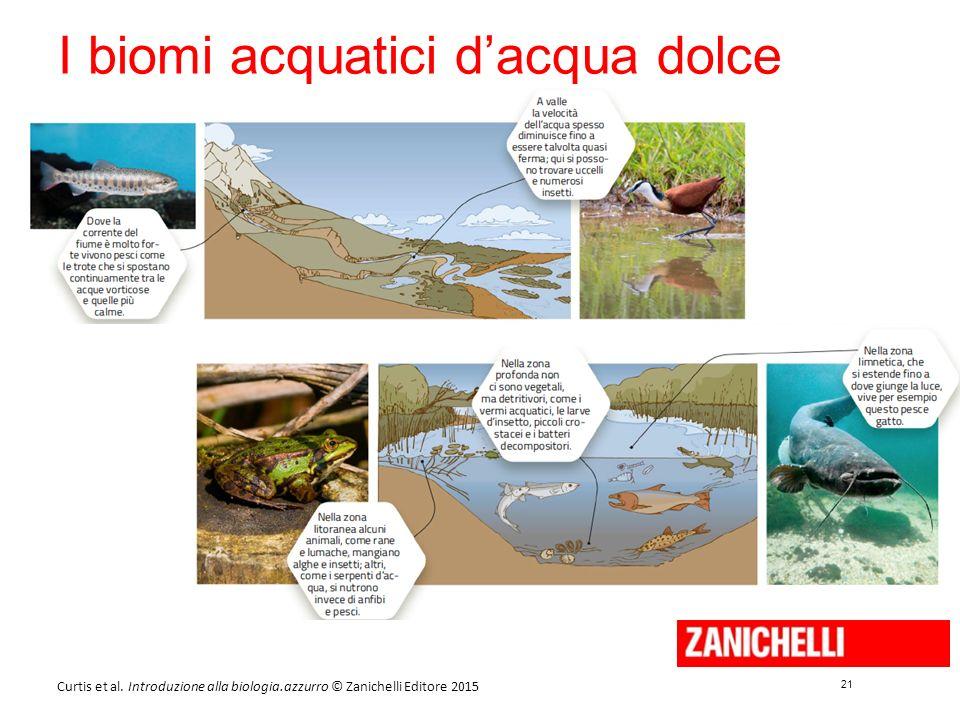 21 Curtis et al. Introduzione alla biologia.azzurro © Zanichelli Editore 2015 I biomi acquatici d'acqua dolce