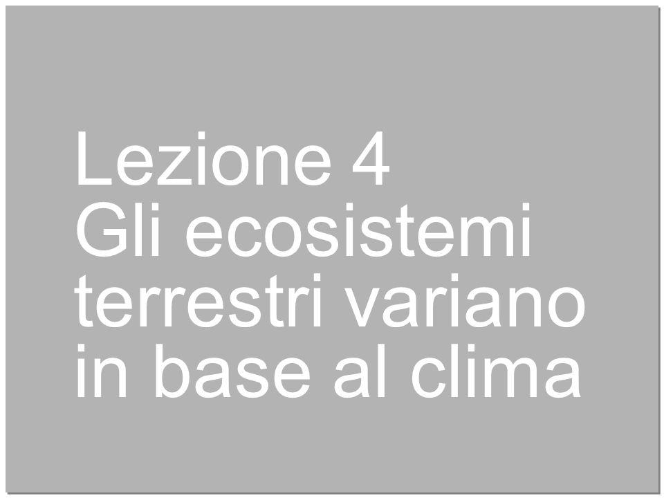 22 Lezione 4 Gli ecosistemi terrestri variano in base al clima